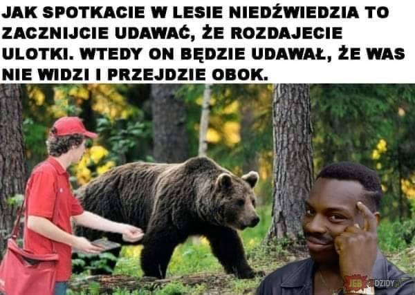 Jak spotkacie w lesie niedźwiedzia to zacznijcie udawać, że...